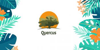 5 najważniejszych zalet rozwiązania Q-Solutions Korekty ZUS